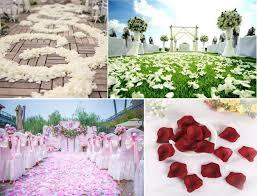 amazon com nykkola 4000 silk artificial petals supplies