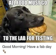 Fab Meme - all food must go to the lab for testing good morning have a fab