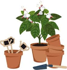 Design Flower Pots Flower Pots Vector Free Vector Download 10 071 Free Vector For
