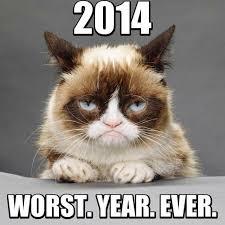 Happy New Year Meme 2014 - 13 best ha ha ha images on pinterest grumpy cat animales and dogs