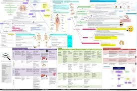 Concept Maps Rheumatoid Arthritis Concept Map Pathophysiology Signs And