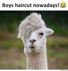 boys haircut now a days funny haircut photo indianfunpic com