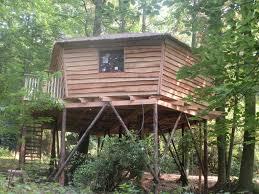 chambre d hote cabane dans les arbres b b la cabane du bois dormant chambre d hôtes spa