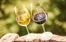 chambrer un vin a quelle température servir le vin conseils de service