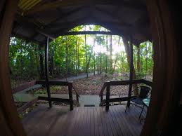 The Beach House Cape Tribulation by My Jungle Tours Adventure Jungle Tours
