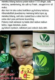 Sabun Tto manfaat sabun tree tea msi tto msi dapat hilangkan jerawat