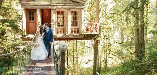 Wedding Tree Treehouse Point