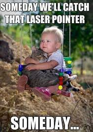 Kids Memes - kid consoling his cat memes