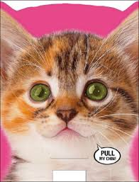 Cat Birthday Cards Funny Meowing Singing Cat Sound Birthday Card Cards Love Kates