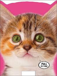 singing birthday meowing singing cat sound birthday card cards kates