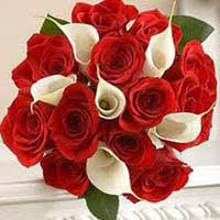 fresh flowers fresh flowers in maharashtra manufacturers and suppliers india