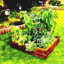 Vegetable Garden Bed Design by Raised Bed Vegetable Garden Beds Home Depot Planter For Design