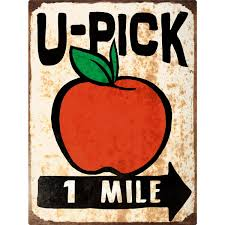 Kitchen Apple Decor by U Pick Apples Farm Stand Floor Graphic Country Kitchen Decor