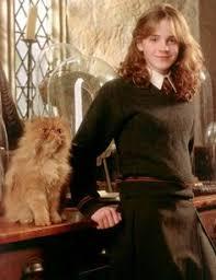 publicity shot emma watson hermione granger harry potter