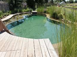 Backyard Swimming Ponds - triyae com u003d natural looking backyard ponds various design