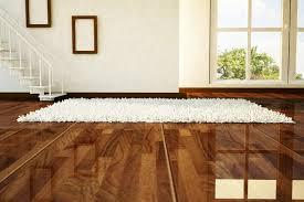 steam cleaning rugs on hardwood floors meze