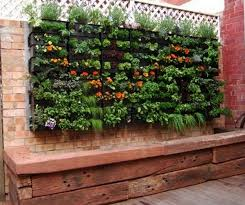 Patio Container Garden Ideas Terrific Container Vegetable Gardening Ideas Gorgeous Patio Garden