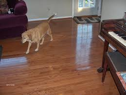 136 best flooring for the home images on flooring