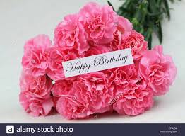 happy birthday card with pink carnation flowers stock photo