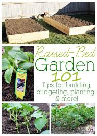 10 Tips For Growing Peppers by 3574 Best Gardening Images On Pinterest Plants Gardening And