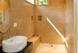 shower terrific pleasant valuable images of walk in shower
