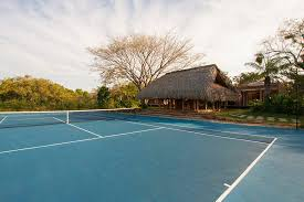 Backyard Tennis Courts by Backyard With Tennis Court Landscape Traditional With Backyard
