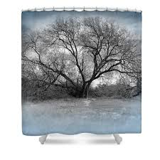 silver trees shower curtain for sale by raul duenez curtains for