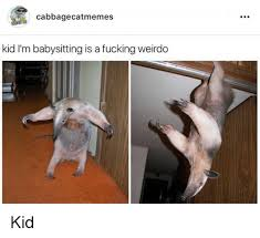 Babysitting Meme - cabbage catmemes kid i m babysitting is a fucking weirdo kid