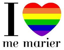 loi du mariage pour tous le de le projet de loi sur le mariage reporté