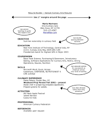 Resumes Templates Online Resume Template Online Free Resume Template And Professional Resume