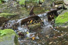 pondless waterfalls a frog u0027s dream aquatic services