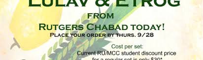 lulav and etrog for sale rutgers rutgers chabad