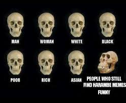 Funny White Memes - people who still find harambe memes funny skull comparisons know