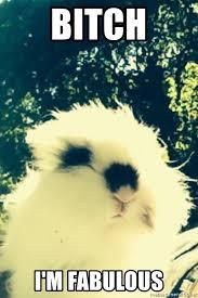 Bitch Im Fabulous Meme - bitch i m fabulous confused bunny in the wind meme generator