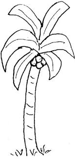 coloring pictures of a palm tree palm tree to color