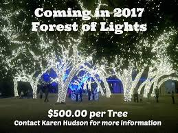 lighting project for wintersmith park