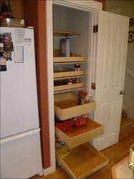 Cabinet Pull Out Shelves by Kitchen Roller Shelves For Kitchen Cabinets Pull Out Organizer