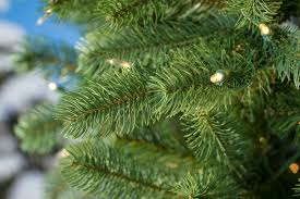 7 5ft pre lit lakewood spruce feel real artificial tree