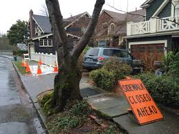 who you should call if you trip on a tree root in seattle knkx