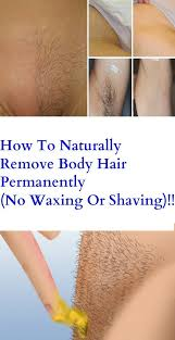pubic hair disappearing how to naturally remove body hair permanently no waxing or