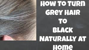 how to turn grey hair to black naturally at home youtube