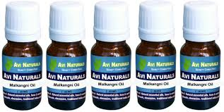 avi naturals malkangni oil pack of 5 price in india buy avi
