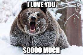 I Fucking Love You Memes - i love you i fucking love cocaine bear meme on memegen