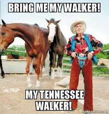 Cowgirl Memes - only horse people understand this lol tennessee walking horse