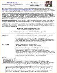 resume for job interview format impressive resume format resume format and resume maker impressive resume format 27 examples of impressive resumecv designs dzineblogcom 93 marvellous proper resume format examples