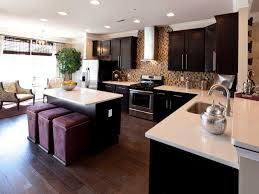 Dark Kitchen Cabinets With Light Granite Amazing Designs From Showhouse Showdown Open Concept Kitchen