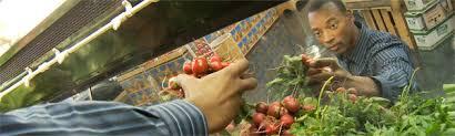 raw food diet for diabetics azpm