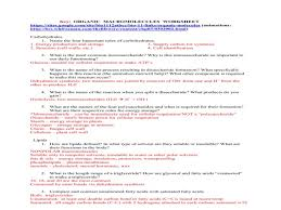 key organic macromolecules worksheet u2013 guillermotull com