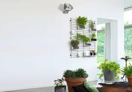 Indoor Planters by Indoor Hanging Planters 4 Piece Modern Ceramic Hanging Planter