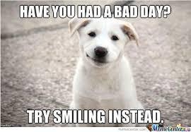 Smiling Dog Meme - smiling dog meme 28 images smiling dog blank template imgflip